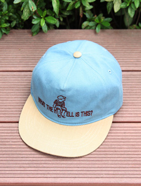 this washing snapback ; sk [ 3color / free size ] 디스 워싱 스냅백